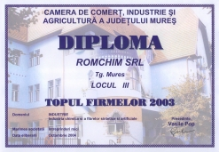 Diploma - Topul firmelor 2003