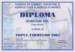 Diploma - Topul firmelor 2004