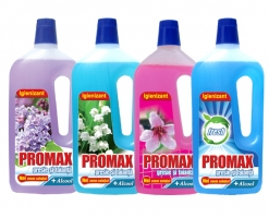 Promax-Tile and Sandstone Solution (1500ml)